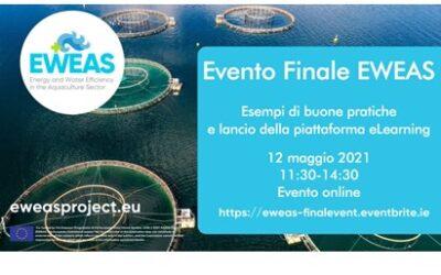 Evento finale EWAS