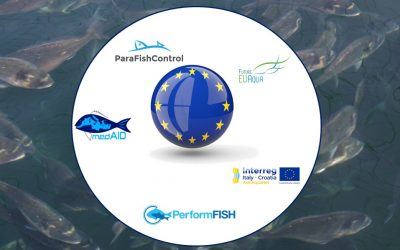 Workshop progetti H2020 EU